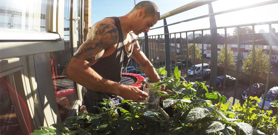 Ti_Gardening03